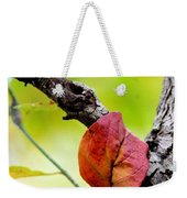 Hanging By A Limb Weekender Tote Bag