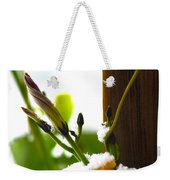Hanging On Weekender Tote Bag by Elaine Mikkelstrup