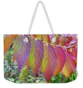 Hanging Out To Dry No. 2 Weekender Tote Bag