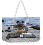 Harbor Seal Phoca Vitulina Mother Weekender Tote Bag