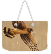Harrier Over Golden Grass Weekender Tote Bag