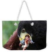 Harris Hawk Feeding Weekender Tote Bag