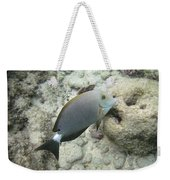 Hawaiian Tropical Fish P1060093 Weekender Tote Bag