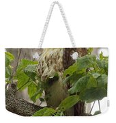 Hawk On Watch Weekender Tote Bag