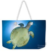 Hawksbill Sea Turtle Belly, Australia Weekender Tote Bag