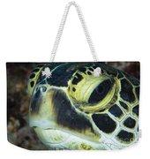 Hawksbill Sea Turtle Portrait Weekender Tote Bag