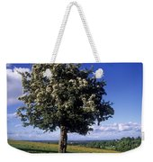 Hawthorn Tree On A Landscape, Ireland Weekender Tote Bag