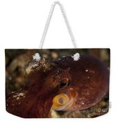 Head Shot Of A Brownish Red Coconut Weekender Tote Bag