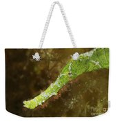 Headshot Of A Green Helimeda Ghost Weekender Tote Bag
