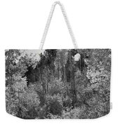 Heart Of The Aspen Forest Weekender Tote Bag