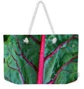 Heart Wise Weekender Tote Bag by Susan Herber