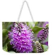 Hebe Dona Diana Flowers Weekender Tote Bag