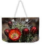Hedgehog Cactus Flowers  Weekender Tote Bag