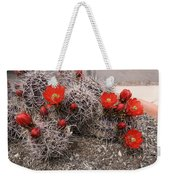 Hedgehog Cactus With Red Blossoms Weekender Tote Bag