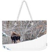Hello Moose Weekender Tote Bag