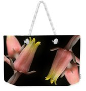 Hen And Chicks Weekender Tote Bag