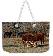 Hereford Cattle Weekender Tote Bag