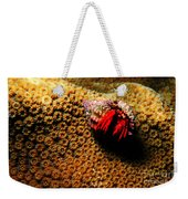 Hermit Crab On Coral Weekender Tote Bag