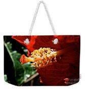 Hibiscus Highlight Weekender Tote Bag