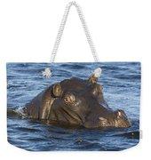 Hippopotamus Hippopotamus Amphibius Weekender Tote Bag