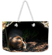 Hit The Otter Snooze Weekender Tote Bag