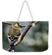 Ho Hum Bird In An Ice Storm Weekender Tote Bag