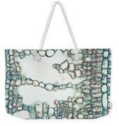 Holly Leaf Palisade Cells Weekender Tote Bag