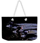 Hooded Mergansers And Moon Glare Weekender Tote Bag