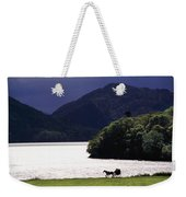 Horse And Buggy By Waterfront Weekender Tote Bag