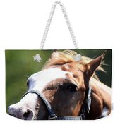 Horse At Mule Days 2012 - Benson Weekender Tote Bag