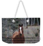Horse Behind The Fence Weekender Tote Bag