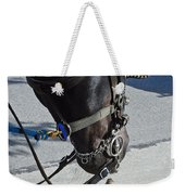 Horse Feathers Weekender Tote Bag
