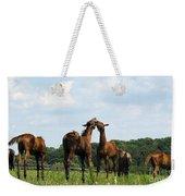 Horse Foul Play II Weekender Tote Bag