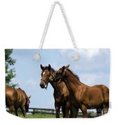 Horse Foul Play Vi Weekender Tote Bag