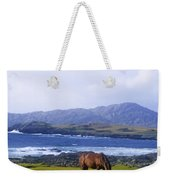 Horse Grazing In A Field, Beara Weekender Tote Bag