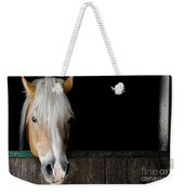 Horse In The Stable Weekender Tote Bag