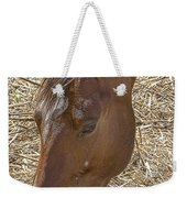 Horse With No Name Weekender Tote Bag