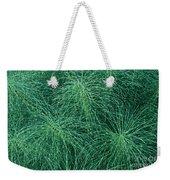 Horsetail Fern Weekender Tote Bag