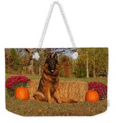 Hoss In Autumn II Weekender Tote Bag