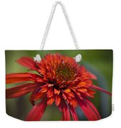 Hot Papaya Hybrid Coneflower Weekender Tote Bag
