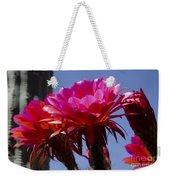 Hot Pink Cactus Flowers Weekender Tote Bag