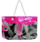 Hot Pink Cactus Weekender Tote Bag by Kaye Menner