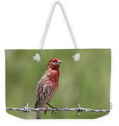 House Finch - Content Weekender Tote Bag