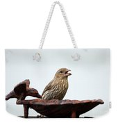 House Finch Eating Jelly Weekender Tote Bag