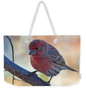 Housefinch IIi Weekender Tote Bag