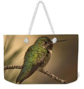 Humming Bird On Branch Weekender Tote Bag