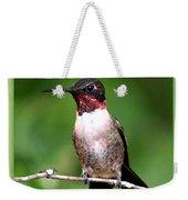 Hummingbird - Male - Will Soon Be Grown Weekender Tote Bag