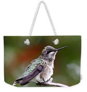 Hummingbird - Little Friend Weekender Tote Bag