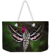Hummingbird Moth - White-lined Sphinx Moth Weekender Tote Bag