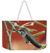 Hummingbird Nap Time  Weekender Tote Bag